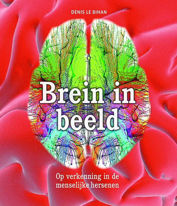Recensie 'Brein in beeld'