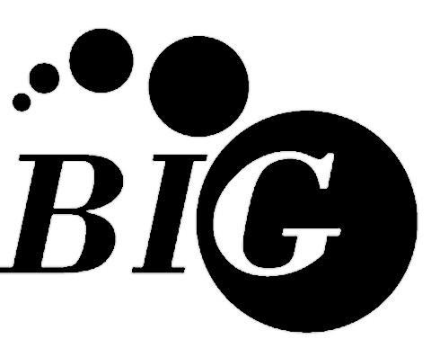BIG_logo zwart