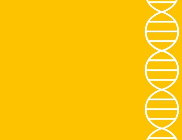 Overal DNA – voor leerkrachten